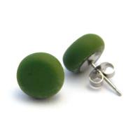 dscn3304-spanish-olive